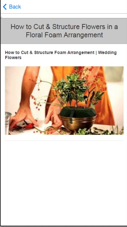 How to Flower Arranging - Tips & Tricks screenshot-3