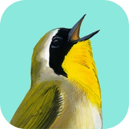 Song Sleuth: Auto Bird Song ID w/David Sibley Info