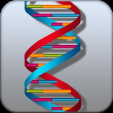 Activities of DNA Damage