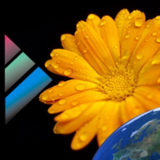 Pollen Vorhersage (DEU)