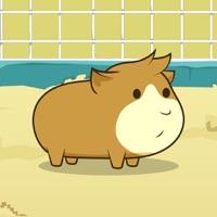 Codes for Guinea Pig Evolution - Breed Mutant Hampster Pets! Hack