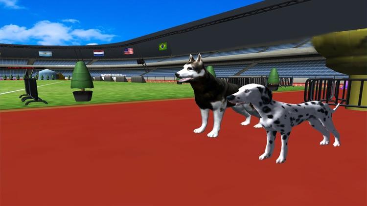 Crazy Racing Dog Simulator