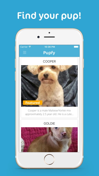 Pupfy - Find, Adopt & Rescue a Loyal Dog Companion
