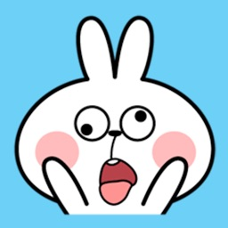 Cool Rabbit Face