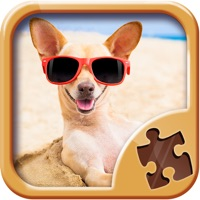 Codes for Fun Jigsaw Puzzles - Free Brain Training Games Hack