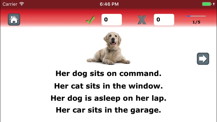 Language Therapy Lite: 4-in-1 for Aphasia & Stroke screenshot-3