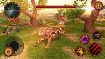 Leopard Survival Life Simulator : Animal of Prey