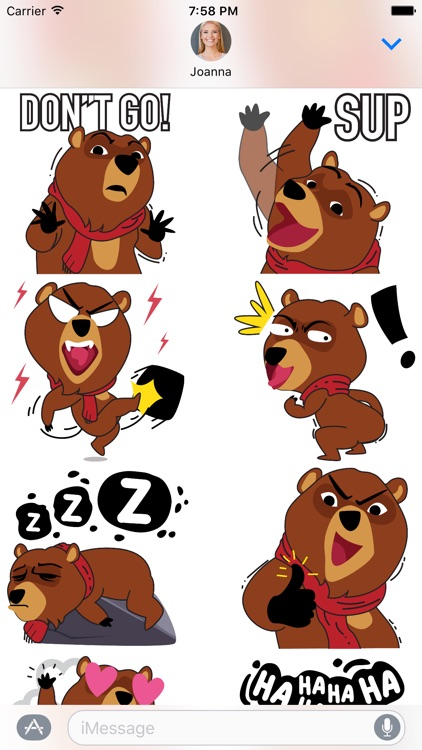 Boris the Bear