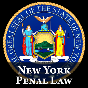 NY Penal Law 2017 - New York Statutes app