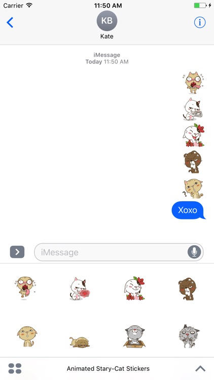 Animated Stary Cat Stickers For iMessage