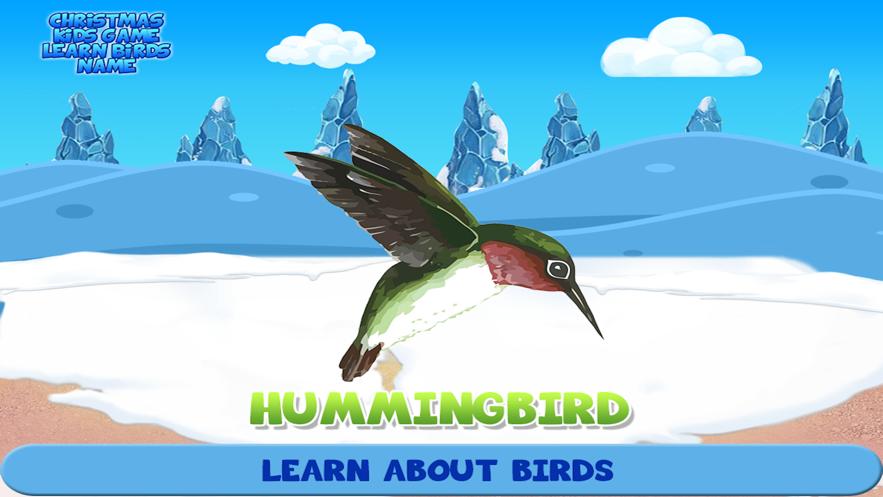 Christmas Kids Game Learn Birds Name】应用信息- iOS App基本