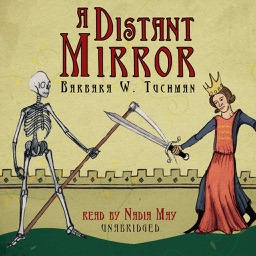 A Distant Mirror (by Barbara W. Tuchman)