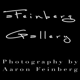 aFeinberg Gallery