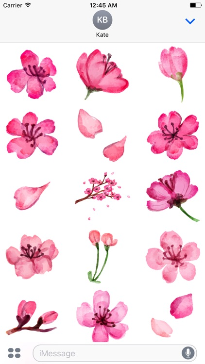 Watercolor Cherry Blossom Sticker Pack