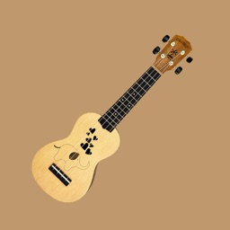 Play The Ukulele Step By Step