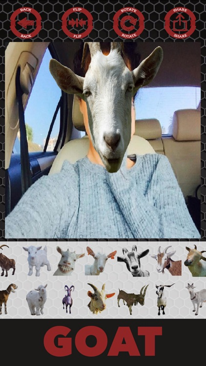 Goat stickers - photo editor goat stickers screenshot-3