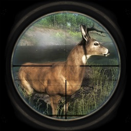 Ultimate Big Deer Hunt Simulator Sniper Challenge