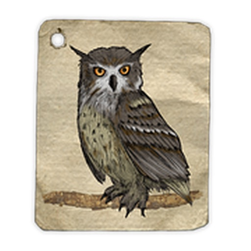 Owls Sticker Pack!