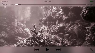 Reef Aquarium 2D/3D freeのおすすめ画像2