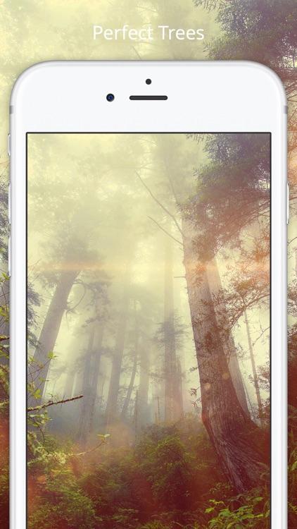Wallpaper Planet screenshot-3
