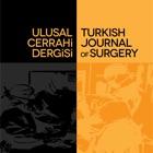 Ulusal Cerrahi Dergisi icon