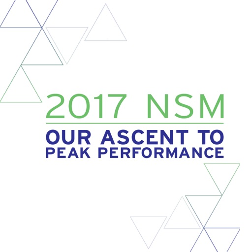 2017 MNK NSM
