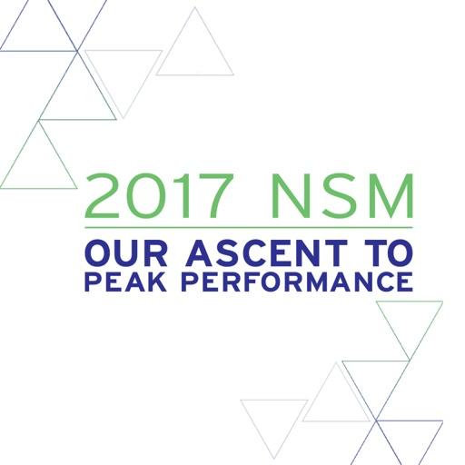 2017 MNK NSM icon
