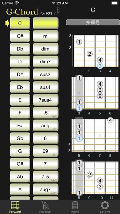 G-Chord ScreenShot0