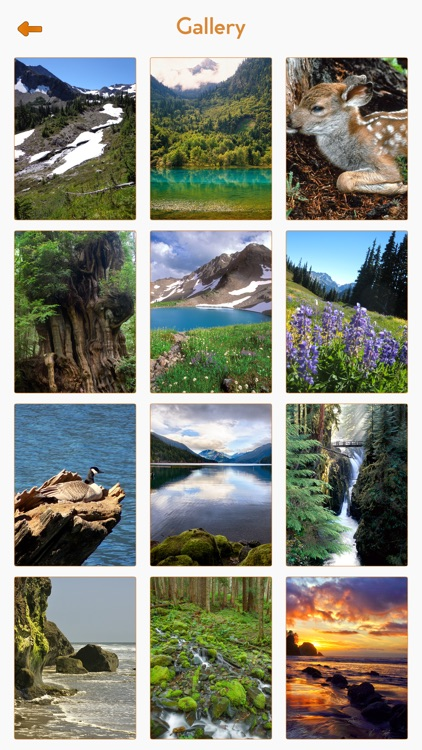 Olympic National Park Guide screenshot-4