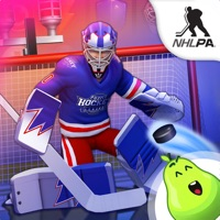 Codes for Puzzle Hockey Hack