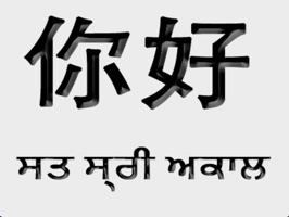 Punjabi Chinese