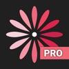 WomanLog Pro カレンダー