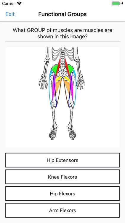 Simple Lines Anatomy screenshot-4