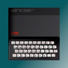 Activities of ZX81