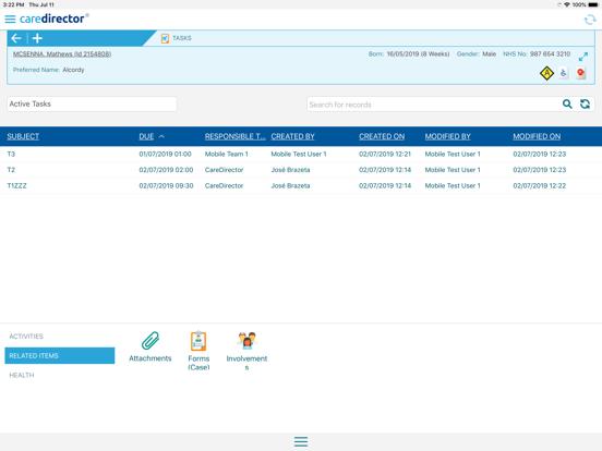 CareDirector screenshot #4