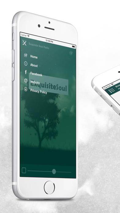 点击获取Exquisite Soul Radio