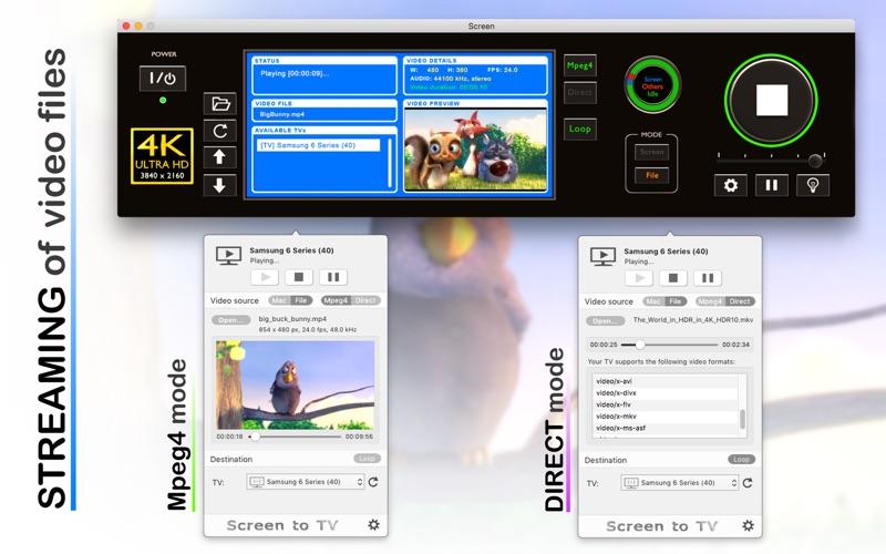 Smartcast Screenshot