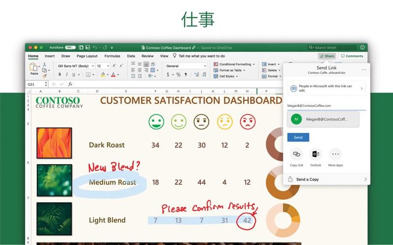 Microsoft Excel ScreenShot2