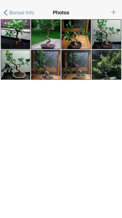 Bonsai Album screenshot-3