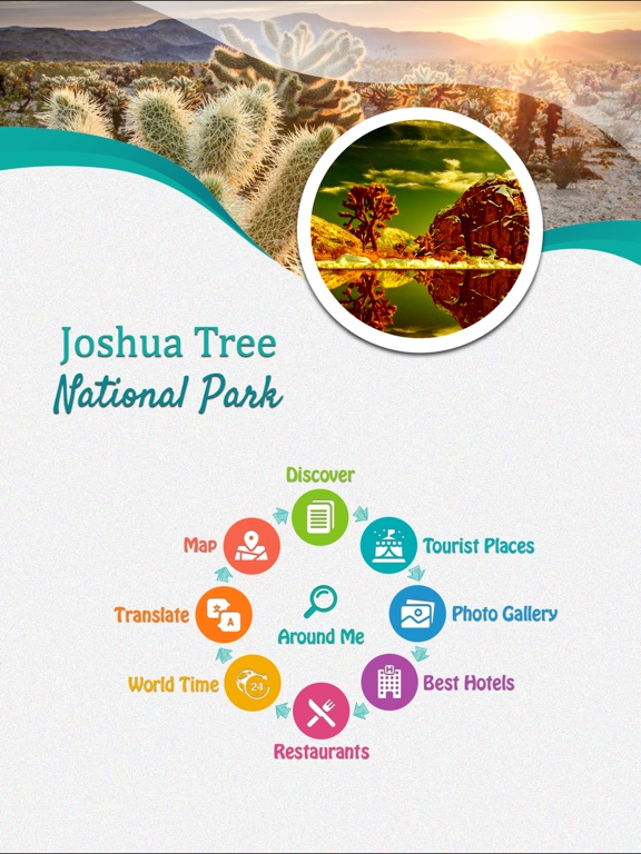 Joshua Tree National Park - US screenshot 7