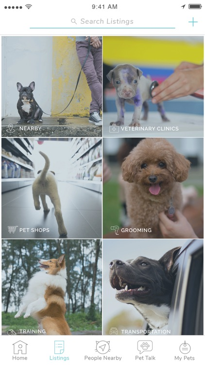 Pet Widget - The Best Pet App