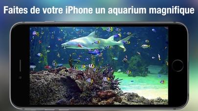 Screenshot #1 pour Aquarium Live HD +