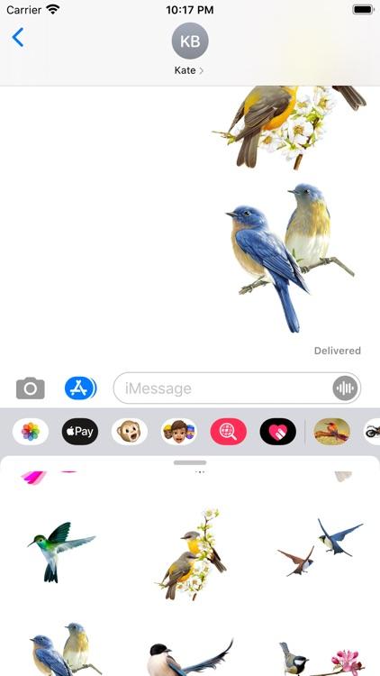 Amazing Birds Gallery screenshot-4