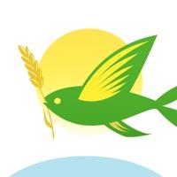 春播-安心健康全球美食