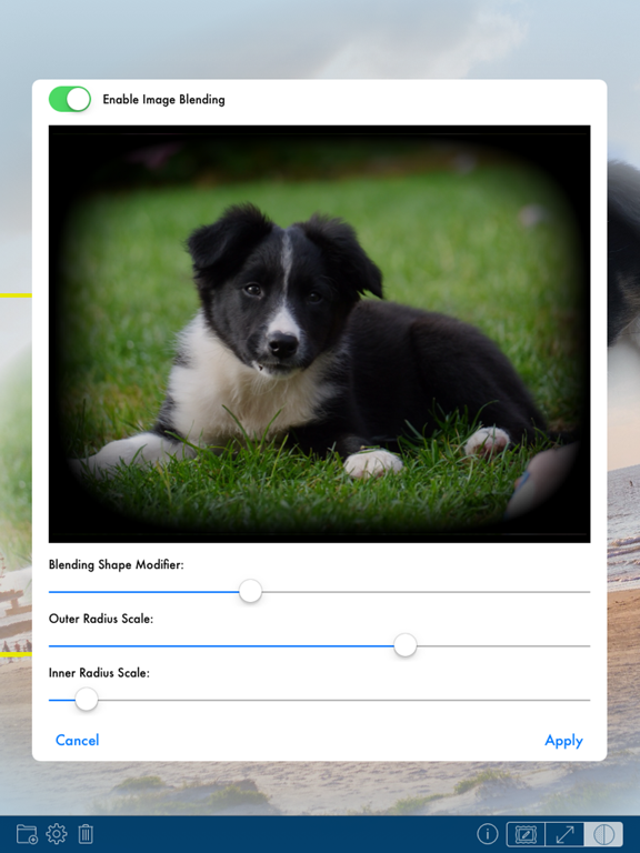 PhotoTangler Collage Maker Screenshots