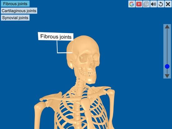 Joints: The Human Levers screenshot 7