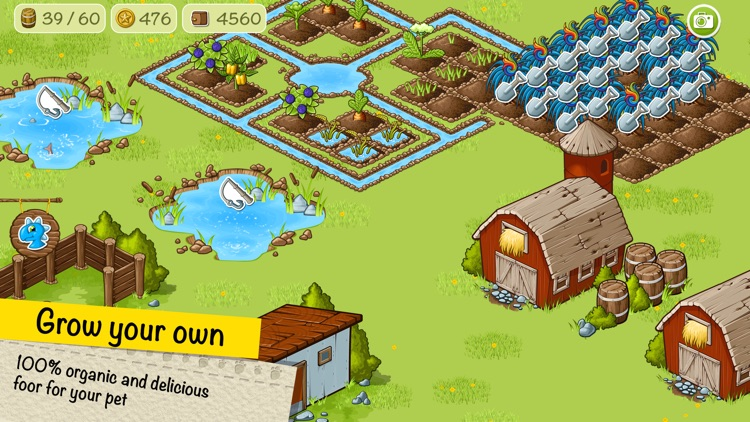 Virtual Pet Dino and Farm. screenshot-3