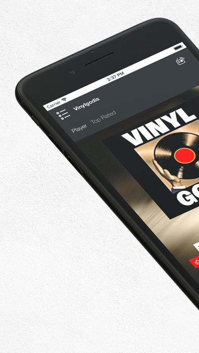 点击获取Vinylgodis Radio