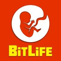 BitLife - #1 Life Simulator