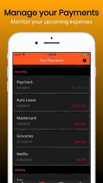 Budget Planner. screenshot-4
